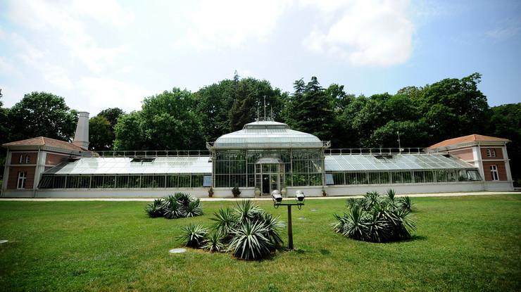 Botanička bašta