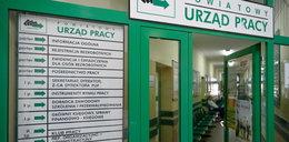To ile w końcu wynosi bezrobocie w Polsce?! Szacunki są drastycznie różne