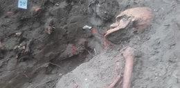 Sensacyjne odkrycie na Westerplatte! To już drugi szkielet polskiego żołnierza