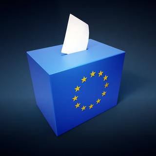 Zaremba: Festiwal kuriozów, czyli subiektywnie o kampanii do eurowyborów