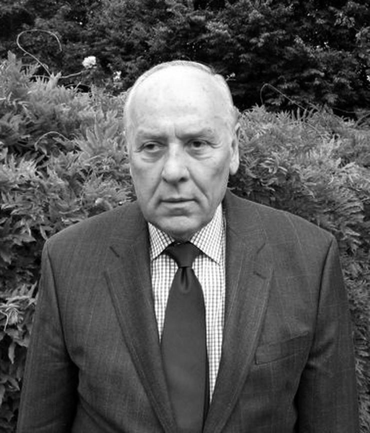 Književnik Radomir Putniković Wikipedia Public domain