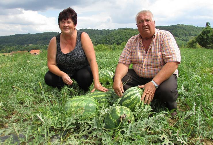 Mira i Savo Vasic lubenice Gradiska foto Milan Pilipovic