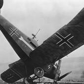 Iza obaranja prvog aviona u istoriji stoji jedan HRABRI SRBIN. Ovo je njegova priča
