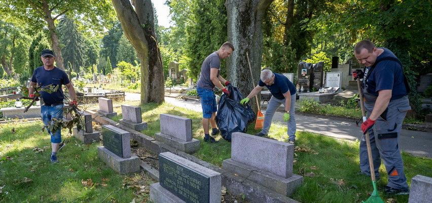 Muzealnicy porządkowali Stary Cmentarz