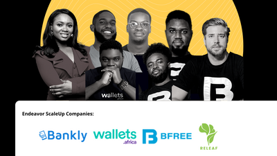 Meet the 7 Nigerian entrepreneurs selected to participate in the Endeavor ScaleUp Program