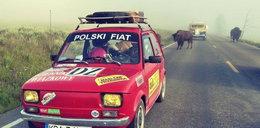 Para z Małopolski przejechała maluchem przez Stany