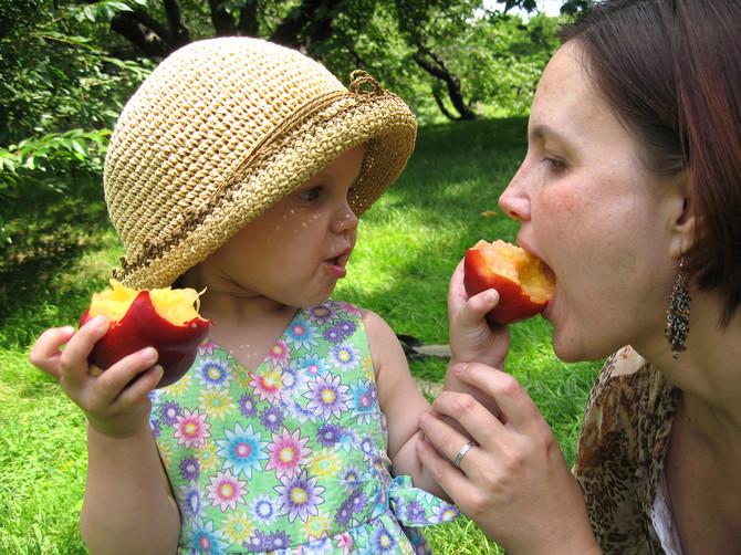 Pitali smo mališane da li je bolje kad im mama iseče i oljušti breskvu ili više vole da jedu celu i odgovor će vas iznenaditi