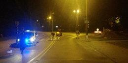 Krowy grasowały w centrum miasta
