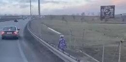 Szokujące nagranie. Dziecko szło samo wzdłuż drogi ekspresowej