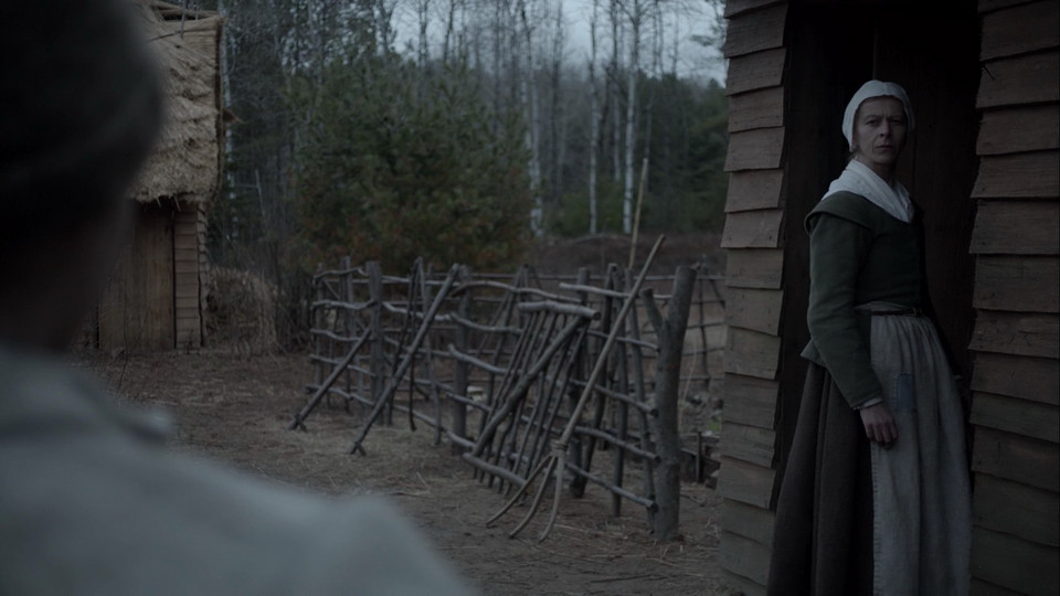 """The Witch"" (2015)"