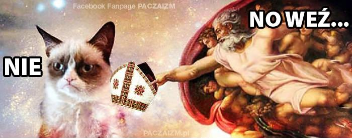 fot. facebook.pl/sfora.pl