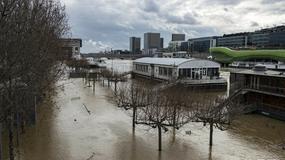 Sekwana zalewa Paryż, zamknięto część ekspozycji Luwru