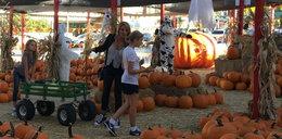 Eva Halina Rich przygotowuje się do Halloween