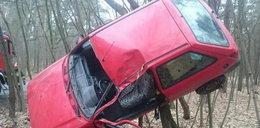 Auto wylądowało w lesie