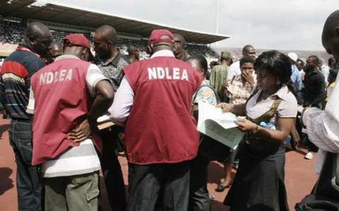 Nigeria Drug Law Enforcement Agency (NDLEA) operatives reportedly found Adesola innocent of the crime (Premium Times)