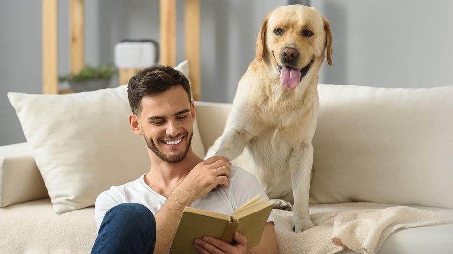 Psy są zwierzętami społecznymi