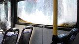Łódzkie autobusy przypominają brudne akwaria