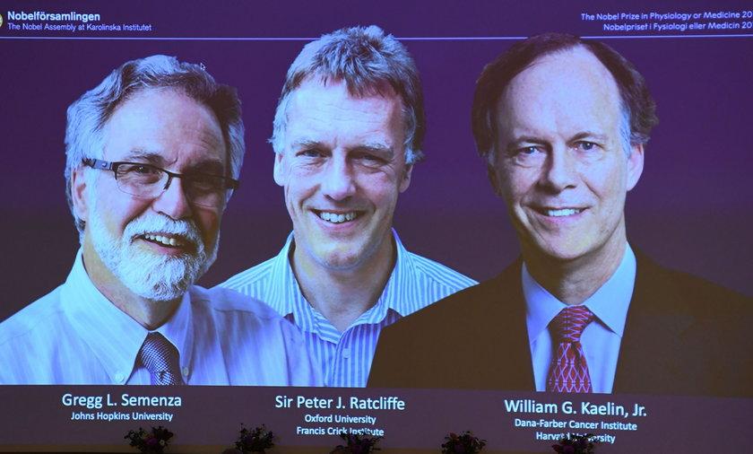 Nagroda Nobla 2019 z fizjologii i medycyny przyznana!