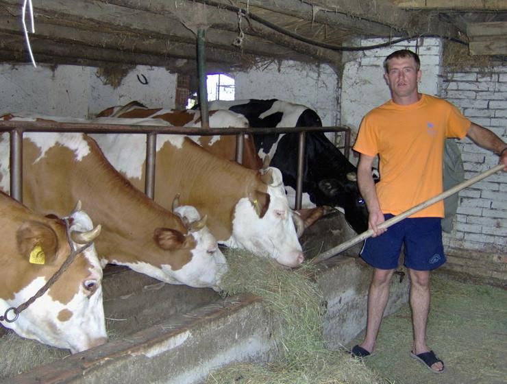 264447_coka-jozef-boros--krave-ne-smeju-gladovati