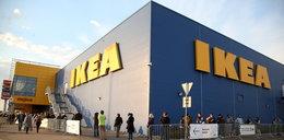 Uwaga! IKEA wycofuje baterie alkaliczne. Stanowią zagrożenie