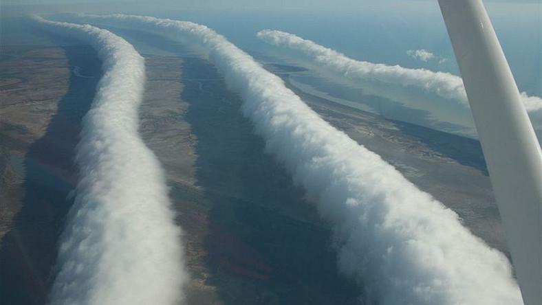 """Zjawisko zwane Morning Glory, powstaje tylko w jednym miejscu na świecie. Jego ojczyzną jest Australia – pojawia się tam cyklicznie od września do listopada w okolicy Zatoki Carpentaria i półwyspu Cape York. Żeby ją zaobserwować trzeba wcześnie wstać, jednak warto, bo to prawdziwy meteorologiczny fenomen. """"Poranna chwała"""" jest chmurą, układającą się w charakterystyczny wał grubości 1-2 km szybująca z prędkością 60 km/h. Zazwyczaj osadzona jest na wysokości około 300 metrów nad ziemią, zdarza się jednak, że schodzi niżej – nawet na wysokość 100 m. Jej długość może dochodzić nawet do 1000 km!"""