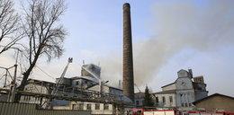 W Katowicach spłonęła hala
