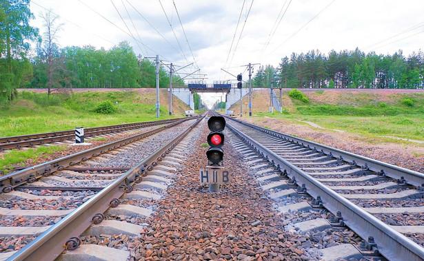 """Pociągi na linii """"Y"""" na początku jeździłyby 250 km/h"""
