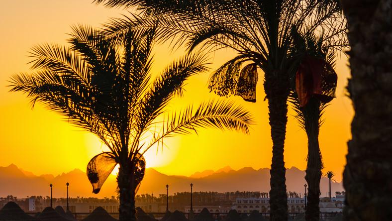 Dodatkowa opłata dla turystów w Egipcie. W dolarach