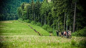 Weekend z Runmageddonem na Śląsku. W sobotę Rekrut, a w niedzielę Wielki Finał Ligi Runmageddonu!