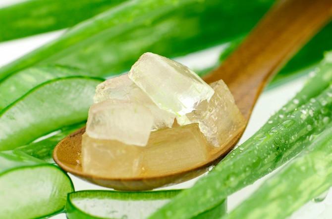 Aloe vera uspešno hladi i hidrira kožu