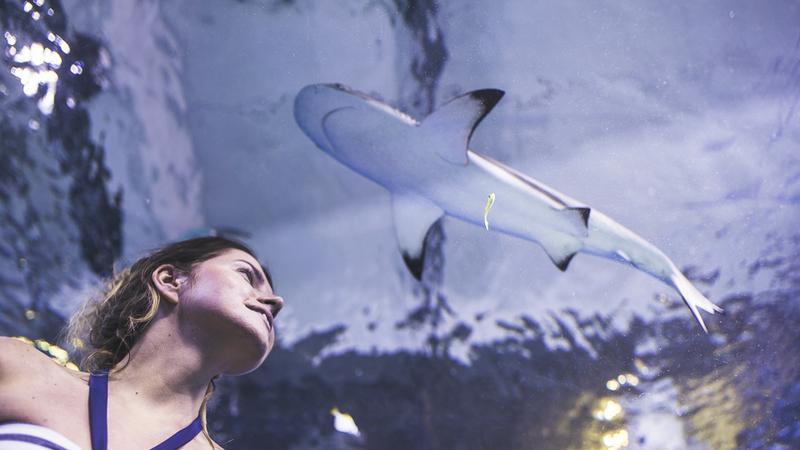 Aquapark Reda zaprasza do wodnego królestwa!
