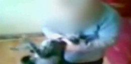 3-latek maltretował kota! Oddadzą zwierzęta jego rodzinie