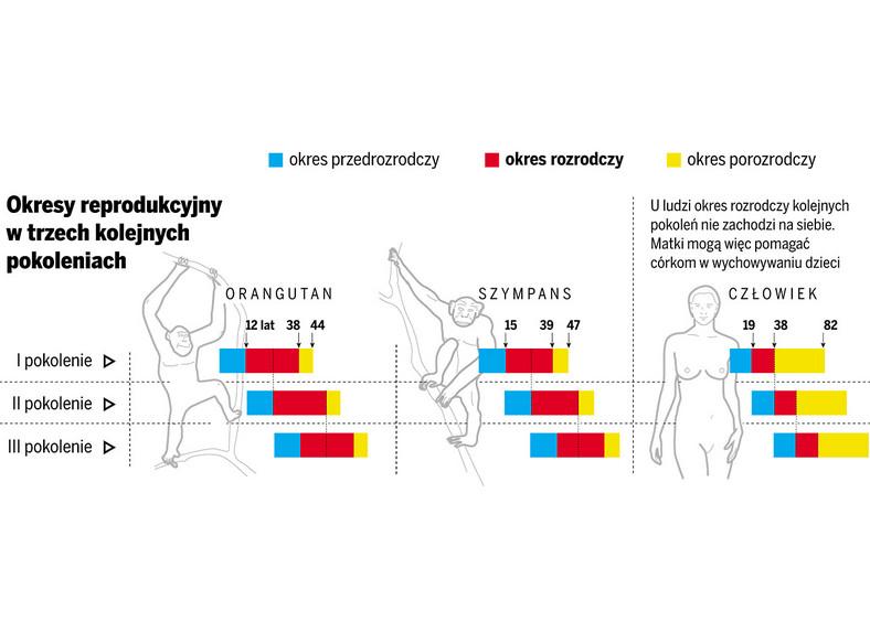 Dlaczego kobiety przechodzą menopauzę i tracą płodność?