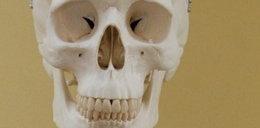 Kupili dom z ludzkimi kośćmi