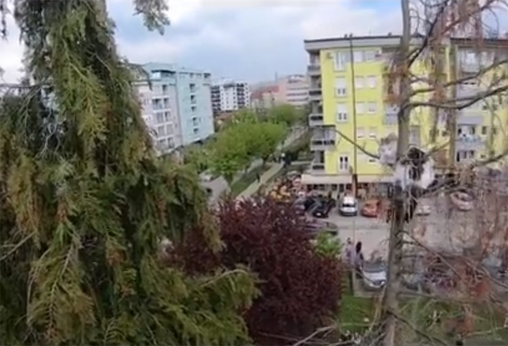 macka-vatrogasci-drvo