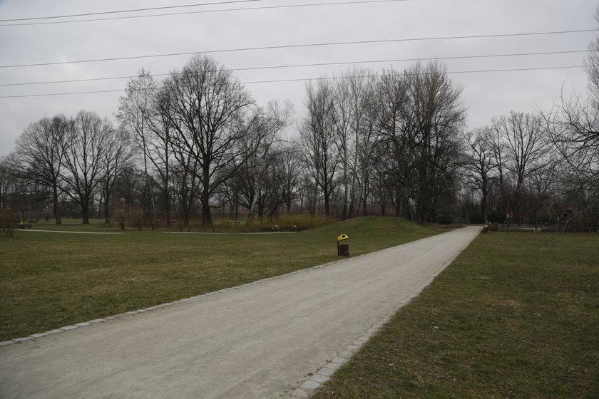 Wrocławiane chcą parku linowego w Parku popowickim