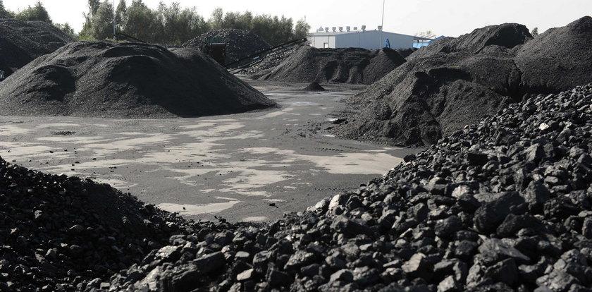 Brutalna prawda o polskim węglu. Niepokojące dane wyszły na jaw