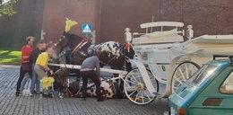 Dramatyczne sceny pod Wawelem. Przewrócił się koń ciągnący dorożkę z turystami