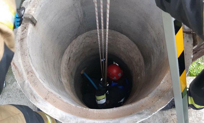 Łódzkie: Śmierć kobiety w studni pod Wieluniem