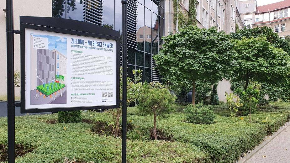 Zielony skwer we Wrocławiu