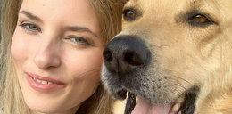 Pies zmasakrował aktorce twarz. Schronisko odpowiada