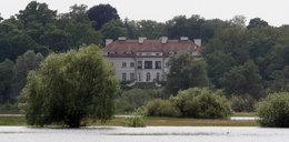 Milioner sprzedaje pałac pod Poznaniem