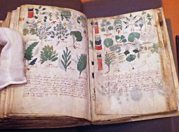 Bogato ilustrovana knjižica od 240 strana uvezana u drevni pergament