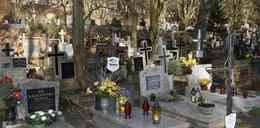 Tak dojedziesz na cmentarze w Gdańsku