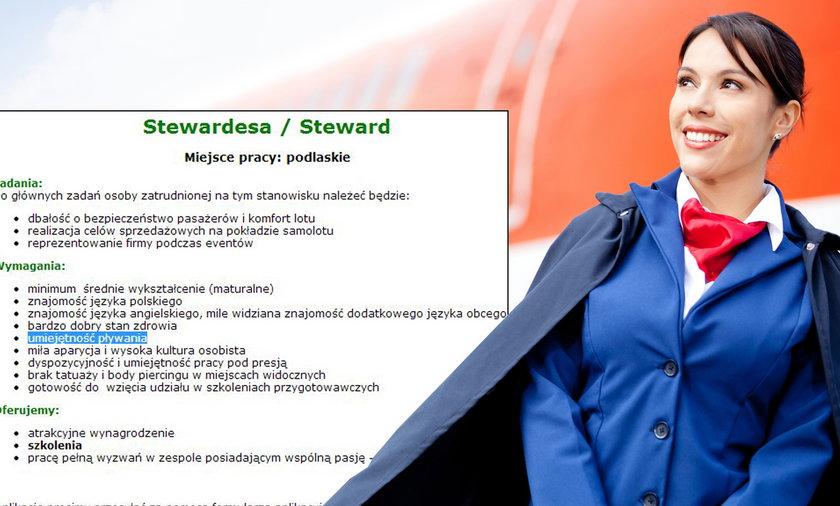 ogłoszenie dla stewardes
