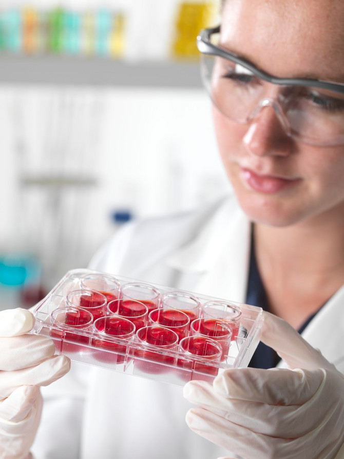 """U planu je da se na Institutu """"Dedinje"""" započne implementacija matičnih ćelija u srčani deo mišića, koji je stradao usled infarkta, što će ubrzati oporavak pacijenta"""