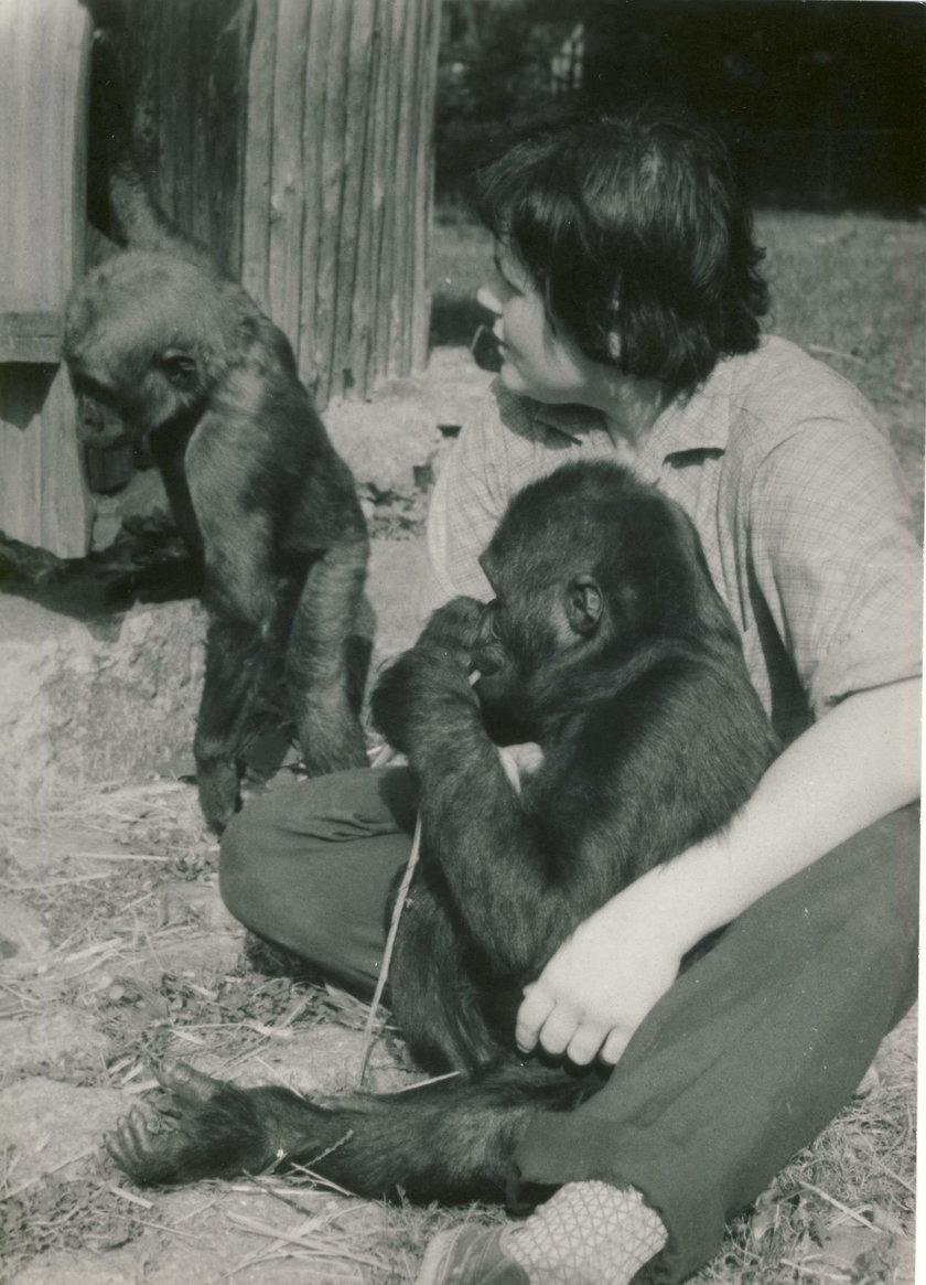 Matka Elżbieta od małp