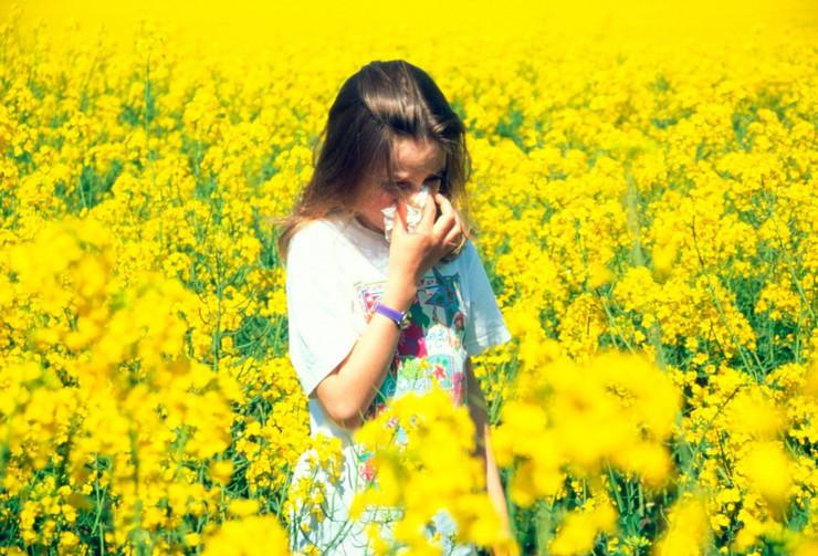 polenska alergija