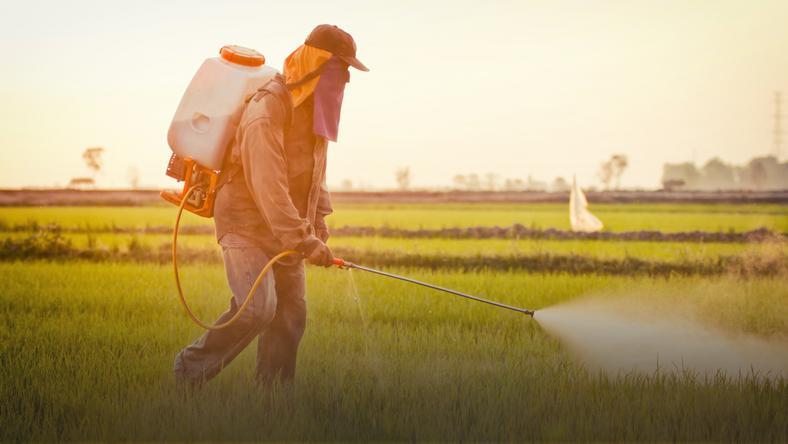 Choroby Do Których Przyczyniają Się Pestycydy I Nawozy Sztuczne