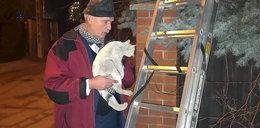 Korwin-Mikke wystroił się w melonik, by strzelać do psa, a koty ratuje w...